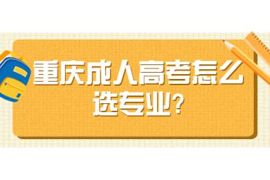 重庆成人高考怎么选专业?